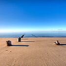 Old Wharf Pilgrim Beach Truro Massachusetts by Artist Dapixara