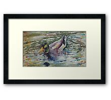 Duck 2 Framed Print