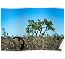 majestic farm field and lone tree Poster