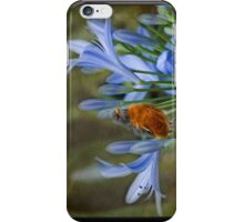 Robin in flowers iPhone Case/Skin