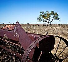 abandoned rural farm equipment by Roxanne Weber