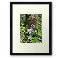 Flowers Gracing The Tree Trunk Take 2 Framed Print