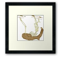 Skeleton Of A Sloth Framed Print