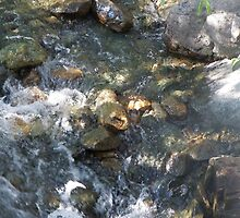 Rocks in Taos Stream by MStrause