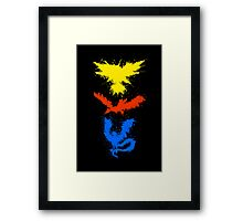 Legendary Bird Splatter Framed Print