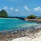 Frigate Rock by globeboater