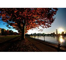 Autumn Boston Photographic Print