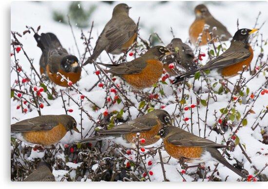 Winter Feast by Tom Talbott
