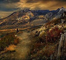 Mt St Helens from Windy Ridge by Peter Hammer