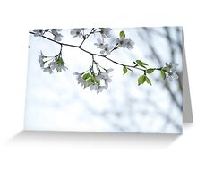 Poppin Blossomz Greeting Card