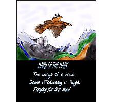 HAIKU OF THE HAWK Photographic Print