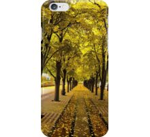 Boston, fall mood iPhone Case/Skin