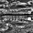 Lake View by Michael  Herrfurth