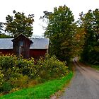 Red Barn on Fitch Road by cammisacam