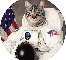 ASTRO CAT by hslim