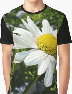 Close Up Common White Daisy With Garden  Graphic T-Shirt