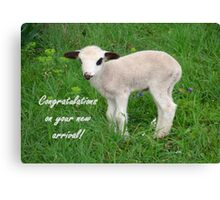 Congratulations On Your New Arrival Canvas Print