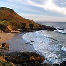 Devon Coastline - Gara Rock by timstathers