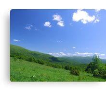 Carpathian landscape Canvas Print