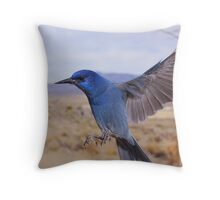 Pinion Jay in flight Throw Pillow