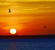 Red, Orange & Blue by BeachBumPics