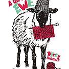 Sheep wool hat knitting needles yarn Christmas by BigMRanch