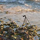 The Lost Photographer by Debbie-anne