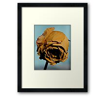Golden Years Framed Print