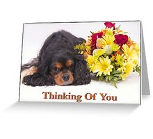 Thinking Of You Cavalier King Charles Spaneil  Greeting Card