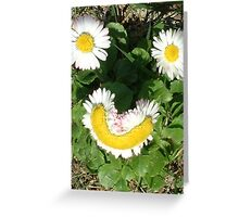 Happy Daisies Greeting Card