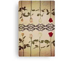 Coloured Roses. Canvas Print