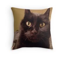 thunder scared my poor cat  Throw Pillow