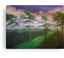 Landscape, mist Canvas Print