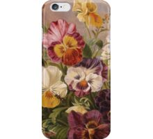iPHONE Case-Pansies iPhone Case/Skin