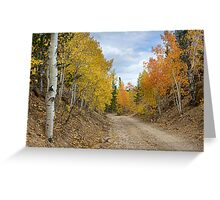 Colorado Rocky Mountain Colorful Autumn Back Road Greeting Card