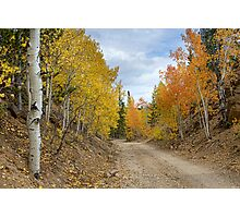 Colorado Rocky Mountain Colorful Autumn Back Road Photographic Print