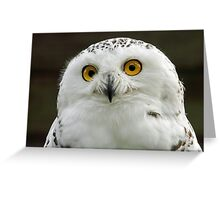 I bet you blink before I do! Greeting Card