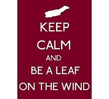 Keep Calm And Be A Leaf On The Wind Photographic Print