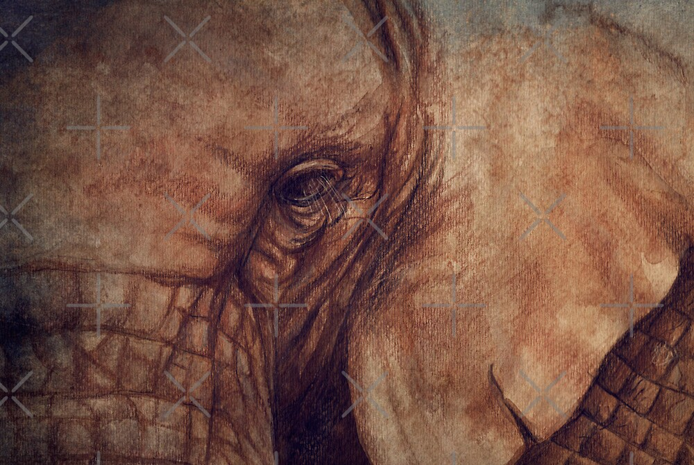 Up Close and Personal by Sarah  Mac