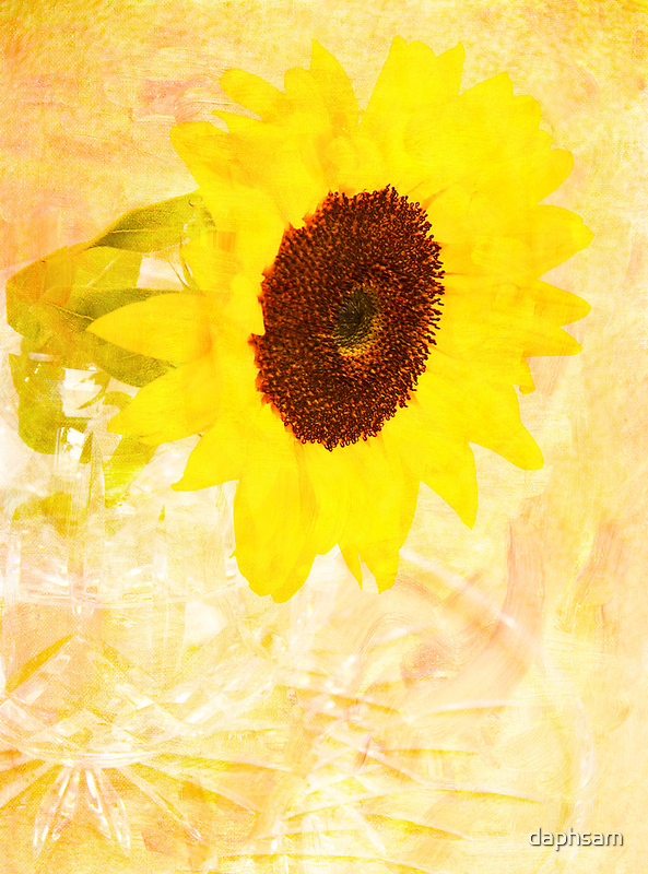 Delightful Sunflower by daphsam