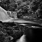 West Mill Weir Banks by Jordan Moffat
