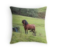 Posing Pony Throw Pillow