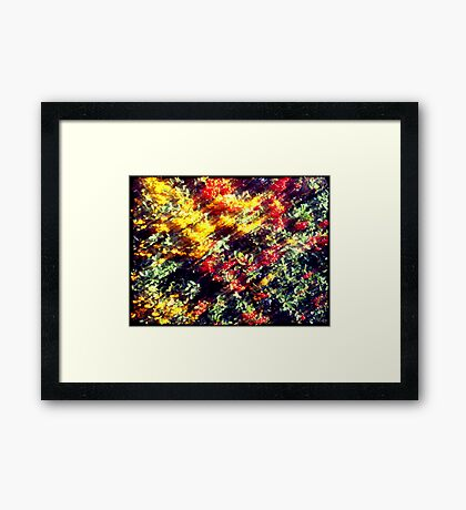 Pieces of Autumn #3 Framed Print