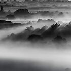 Drifting Morning Mist by John Dunbar