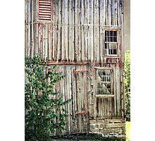 Pane free Photographic Print
