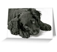 Very cute puppy Greeting Card