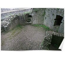 Raglan Castle walls and patterned paving Poster