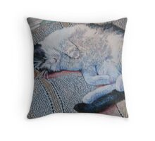 Lazy Caturday Throw Pillow