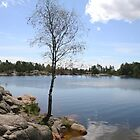 Kristiansand, Norway, lake in national park.  by Grace Johnson