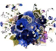 Kathie McCurdy Pressed Flowers - Fancy Free Blue Pansies by Kathie McCurdy